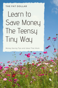 Learn to Save Money the Teensy Tiny Way