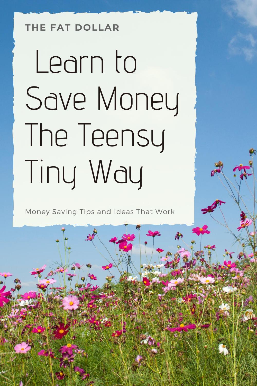 Learn to Save Money the Teensy Tiny Way